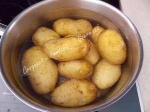 Pommes primeurs épicées DSCN8608
