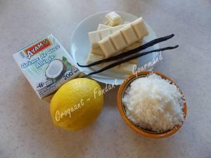 Puits chococo-citron ou fleur coco DSCN0159