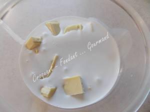 Puits chococo-citron ou fleur coco DSCN0182