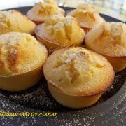 Gâteau citron-coco DSCN0514