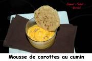 mousse-de-carottes-au-cumin-index-dsc_5153_2692