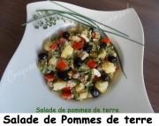 Salade de PDT Index -DSCN8676_28852