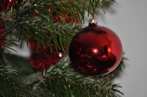 Noël 2010 - DSC_0012_6283