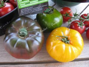 Tomates Prince de Bretagne IMG_6526