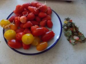 Minestrone de tomates cerises DSCN5327