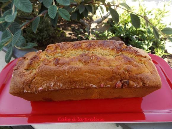 Cake à la praline DSCN5796