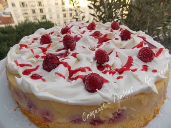 Gâteau magique framboise DSCN0387