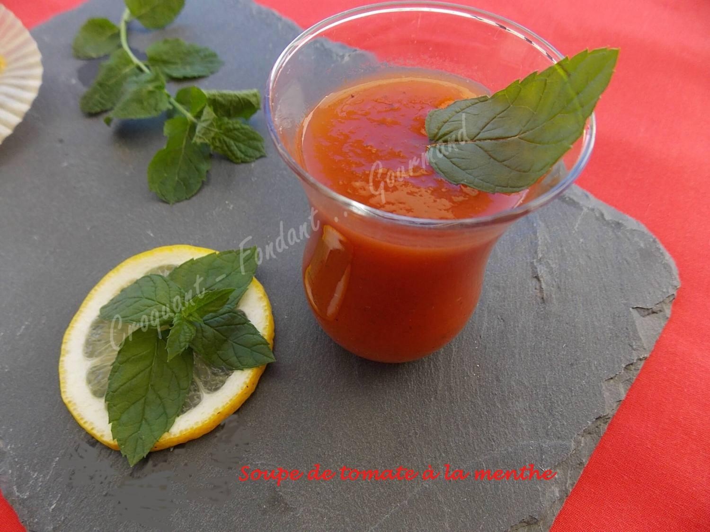 Soupe de tomate à la menthe DSCN5917