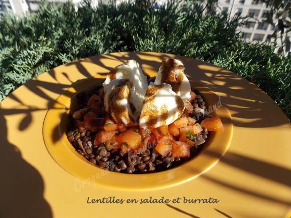 lentilles-en-salade-et-burrata-dscn7620