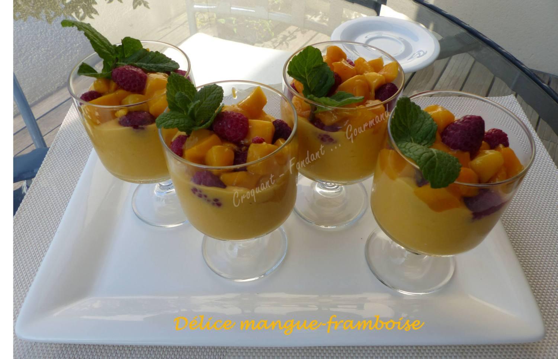 Délice mangue-framboise P1020389