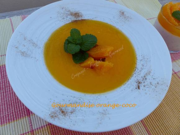 Gourmandise orange-coco P1020215