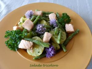 Salade tricolore P1030827
