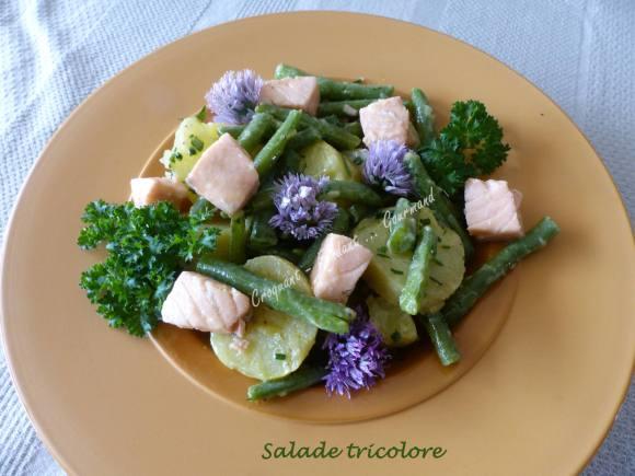 Salade tricolore P1030831