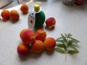Charlotte abricot parfum verveine P1040098