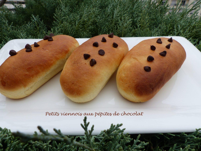 petits-viennois-aux-pepites-de-chocolat-p1060521