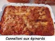 Canneloni aux épinards Index DSCN8407_28583