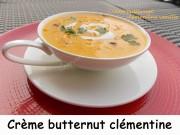Crème butternut clémentine vanille Index DSCN2227