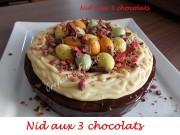 Nid aux 3 chocolats Index DSCN7400