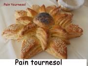 Pain tournesol Index DSCN4088_24022