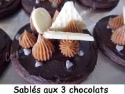 Sablés aux 3 chocolats Index DSCN1256_20527