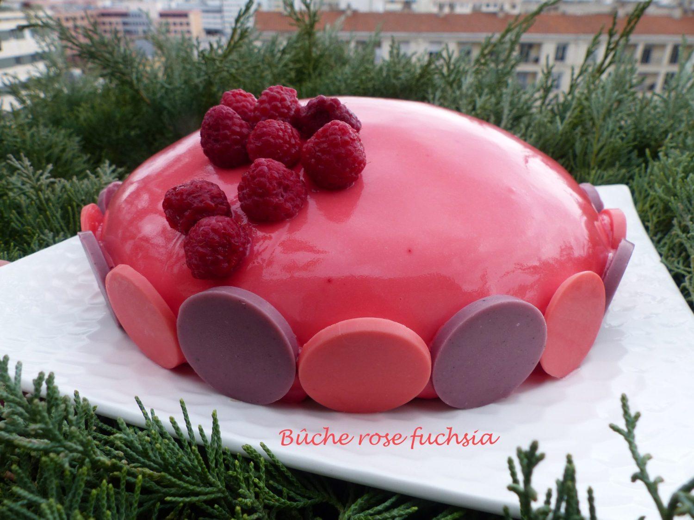 Bûche rose fuchsia P1070609 R
