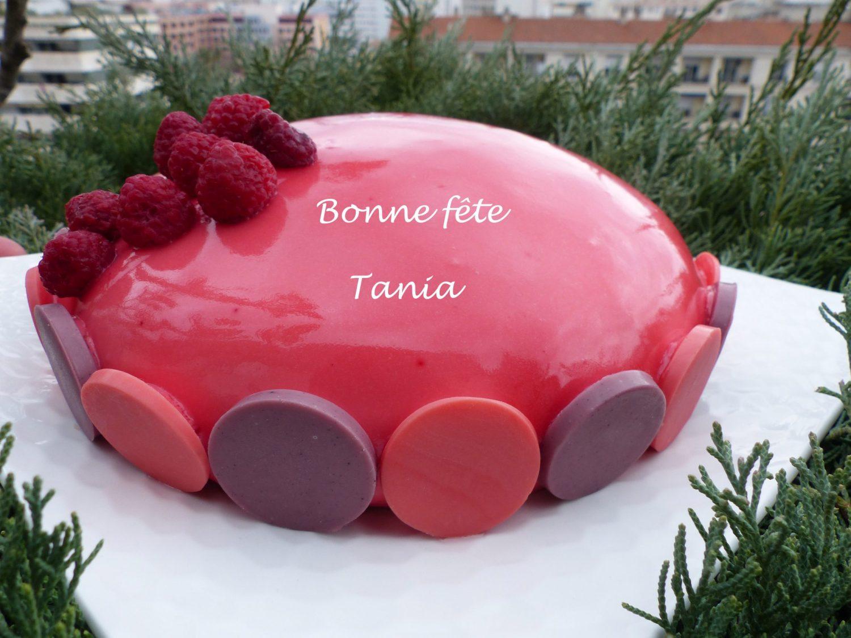 Bûche rose fuchsia P1070610 R