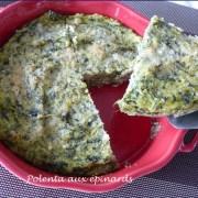 Polenta aux épinards P1080393 R (Copy)