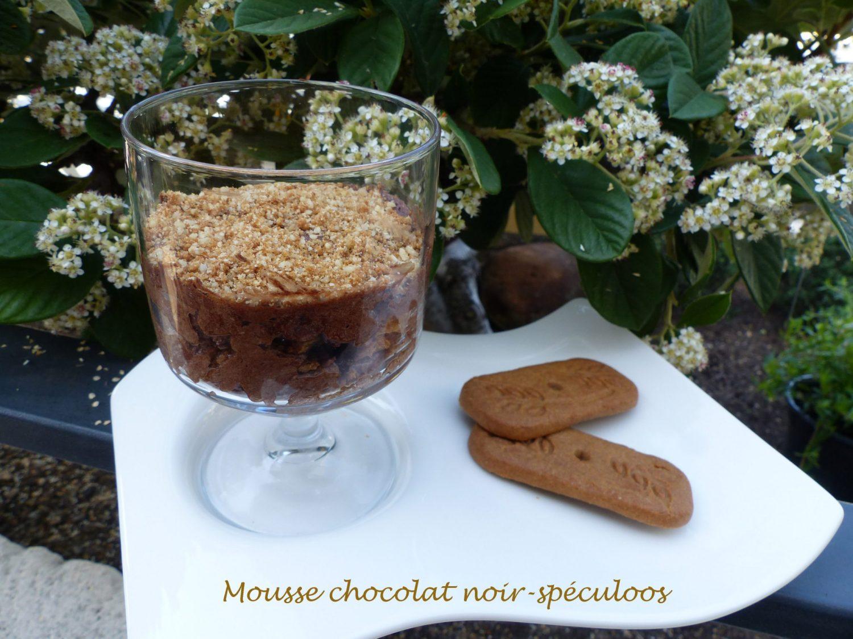 Mousse chocolat noir-spéculoos P111003