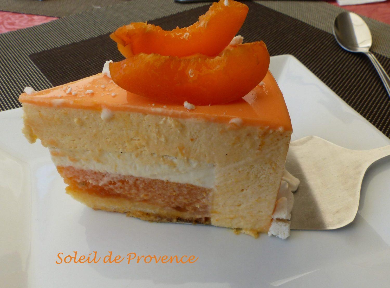 Soleil de Provence P1120584 R