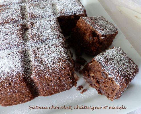 Gâteau chocolat, châtaigne et muesli P1110553 R