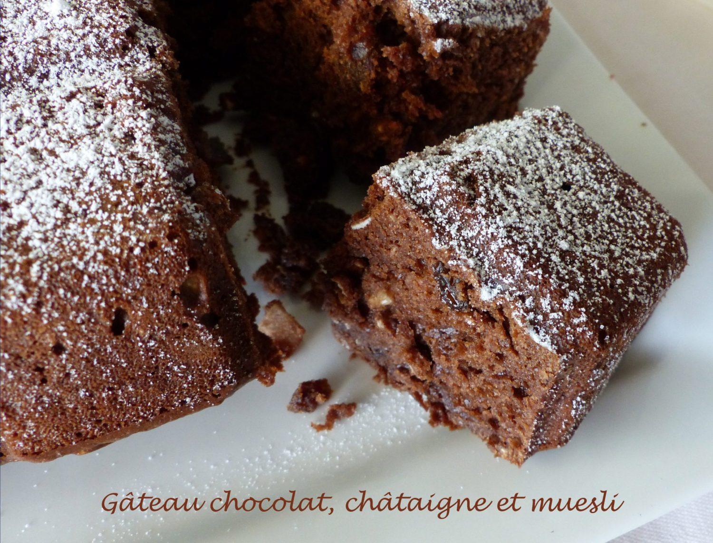 Gâteau chocolat, châtaigne et muesli P1110554 R
