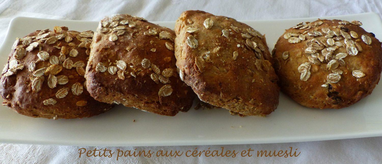 Petits pains aux céréales et muesli P1110490 R