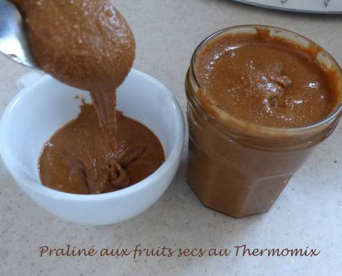Praliné aux fruits secs au ThermomixP1210081 R