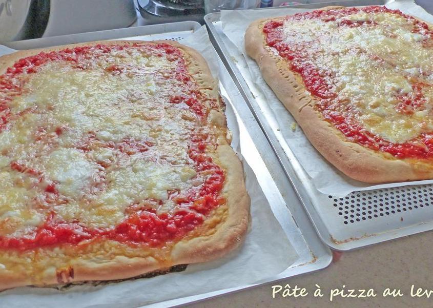 Pâte à pizza au levain P1240287 R (Copy)