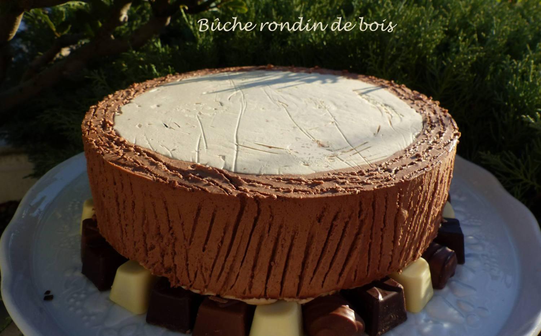 Bûche rondin de bois P1210927 R