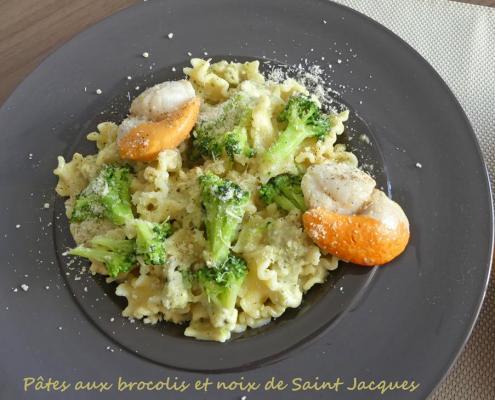 Pâtes aux brocolis et noix de Saint Jacques P1000821 R (Copy)