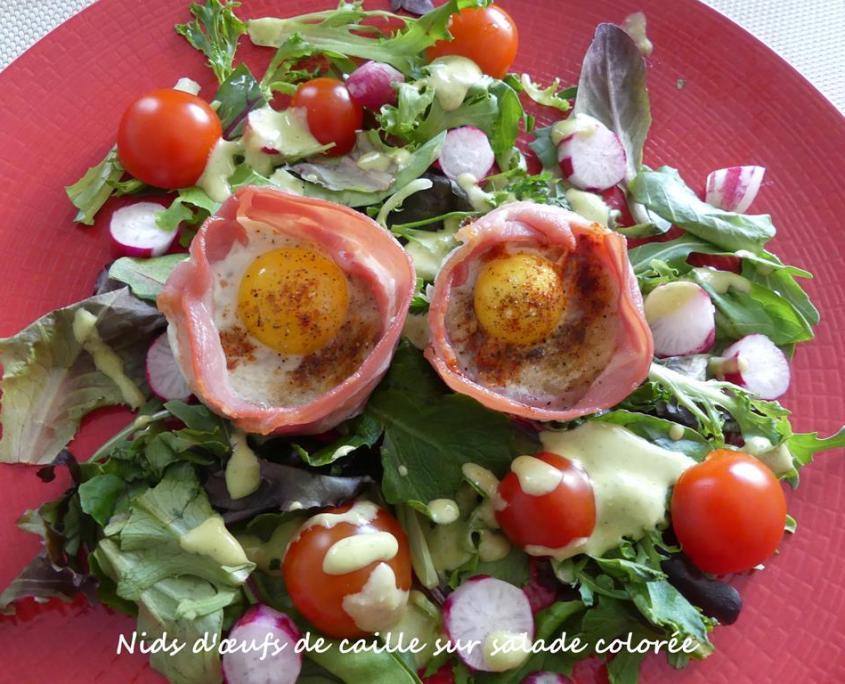 Nids d'œufs de caille sur salade colorée P1010281 R (Copy)