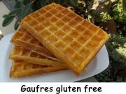Gaufres gluten free Index DSCN5781
