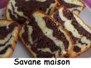 Savane maison Index DSCN3831