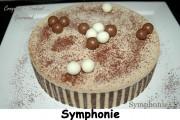 Symphonie Index - DSC_0937_8889