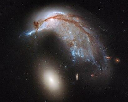 The Porpoise Galaxy