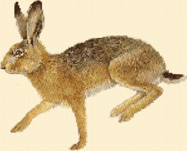 Hare-315-O-Free-Design