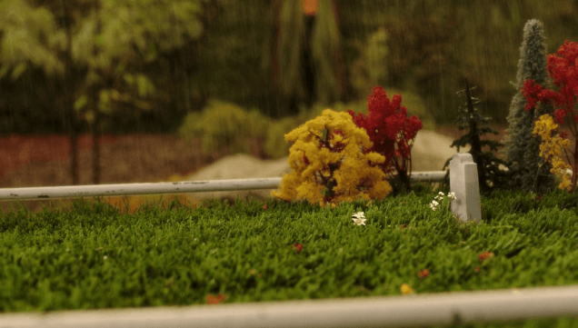 Watering a fake grave