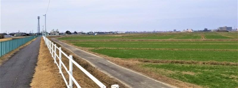 豊田安城自転車道 安城の田園風景