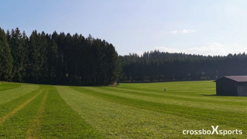 trail-running-wiese-wald-blauer-himmel