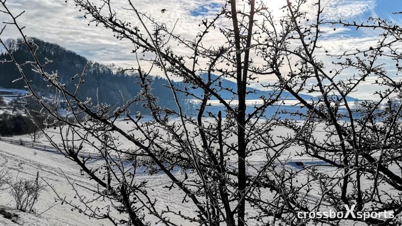 Lauf durch die Winterlandschaft