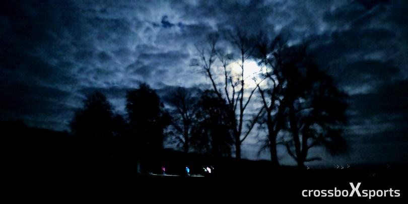 Läufer-Stirnlampe-Vollmond-dunkle Bäume
