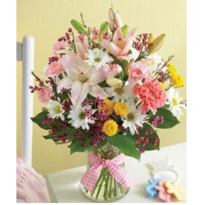 newborn baby girl pink flowers