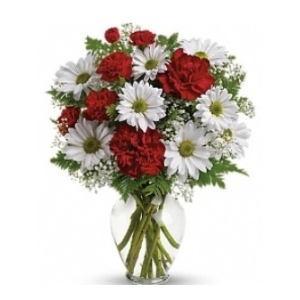 red carnations white daisy