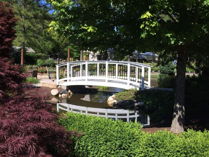 display gardens, botanical garden, pond, bridge, landscape